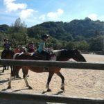 Soggiorno Estivo Estate INPSieme 2019 | Lazio | A cavallo nella natura-LA-MIA-ESTATE-18-11-150x150