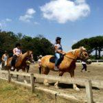 Soggiorno Estivo Estate INPSieme 2019 | Lazio | A cavallo nella natura-LA-MIA-ESTATE-6-19-150x150