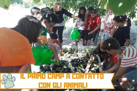Estate INPSieme 2019 Soggiorni Estivi Italia per ragazzi 6-14 anni Conformi 100%-VITA-IN-FATTORIA