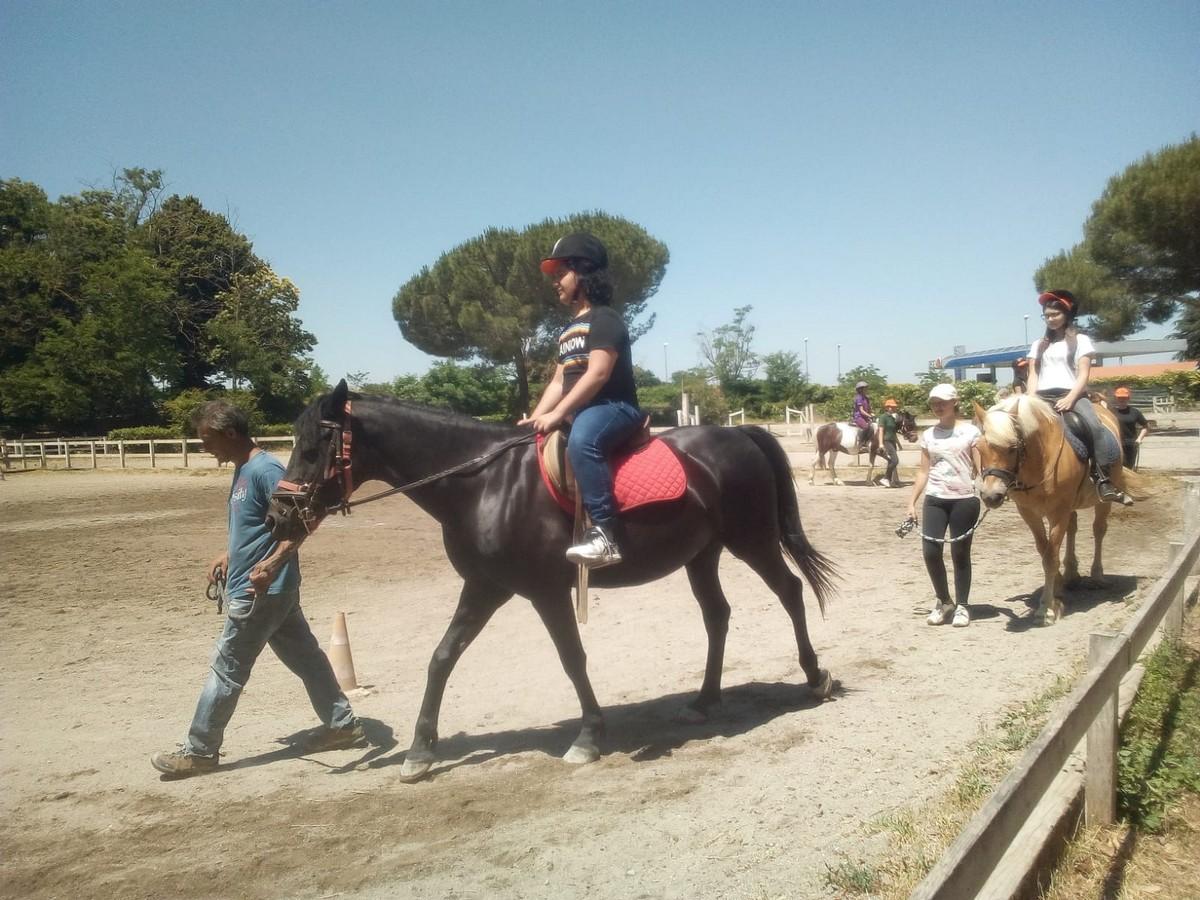 Hotel Balletti 4**** // A cavallo nella verde natura Senior Archivi --BALLETTI-EQUITAZIONE-TS-GIORNO-2-2