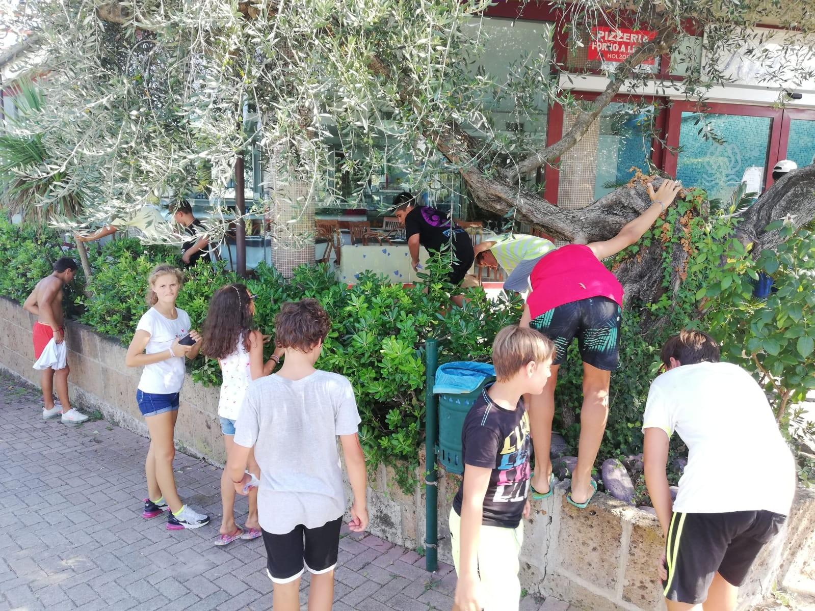 Europe Garden 4**** // Un mare di sport Junior Archivi --ITALIA-FOTO-EUROPEGARDEN-UNMAREDISPORT-SECONDOTURNO-GIORNO145
