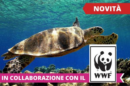 Soggiorni estivi 2021 - Estate INPSieme destinazione Italia-1-92