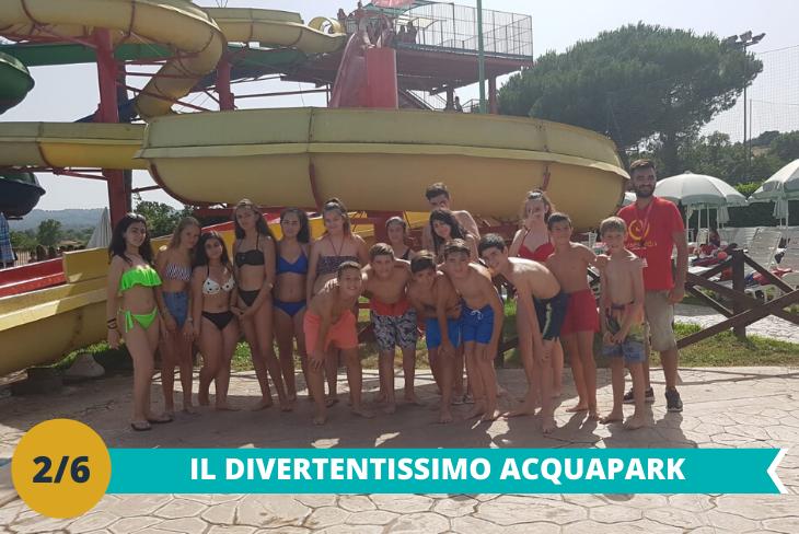 Il divertentissimo Acqua Park: dove i piccoli ospiti avranno la possibilità di divertirsi una intera giornata con numerose attrazioni come scivoli e la fantastica piscina ad onde riscaldata!