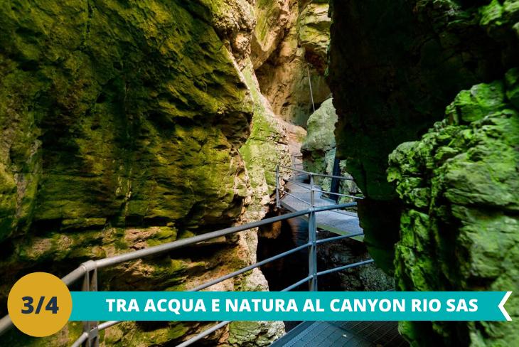 Escursione trekking al Canyon Rio Sas: dove i ragazzi potranno avventurarsi per ammirare le meraviglie della natura e per andare alla scoperta di acque vorticose, cascate e marmitte dei giganti, fossili, stalattiti e stalagmiti