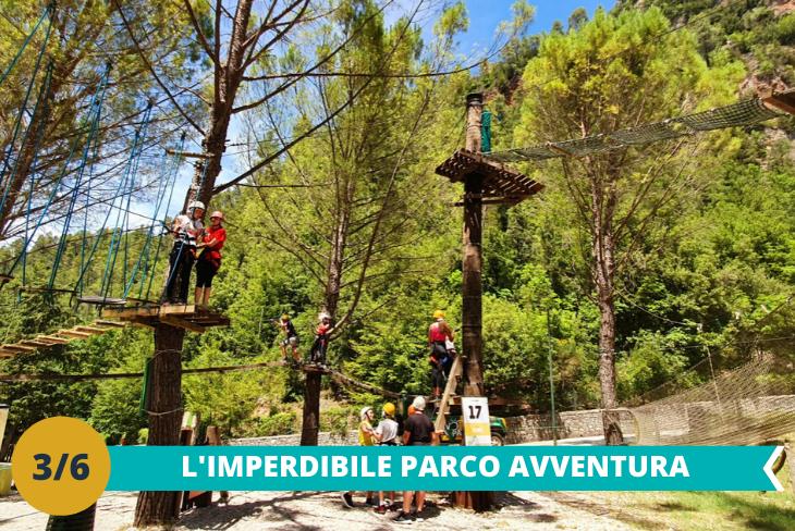Il divertentissimo Parco Avventura, potrete vivere una giornata indimenticabile avventurandovi sui fantastici percorsi: passerelle, ponti, liane e carrucole sospese tra gli alberi in completa sicurezza e nel pieno rispetto della natura
