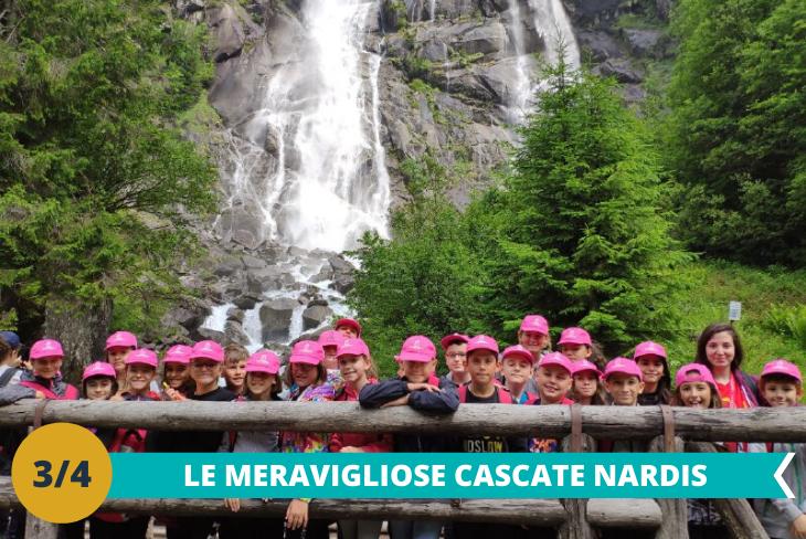 Le CascateNardis, tra le più spettacolari delle Dolomiti, situate nel Parco Naturale Adamello Brenta dove entusiasmarsi per la vista mozzafiato.