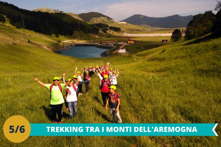 Trekking sui Monti dell'Aremogna, dove la natura incontaminata ci affascinerà e potremo conoscere flora e fauna locale