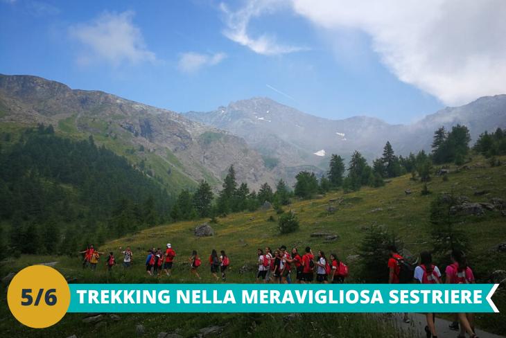 Escursione trekking sulle Alpi, dove i ragazzi potranno avventurarsi tra i boschi ed ammirare le meraviglie della natura