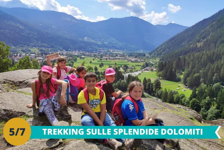 Escursione trekking tra le imponenti Dolomiti, dove i ragazzi potranno avventurarsi tra i boschi ed ammirare le meraviglie della natura
