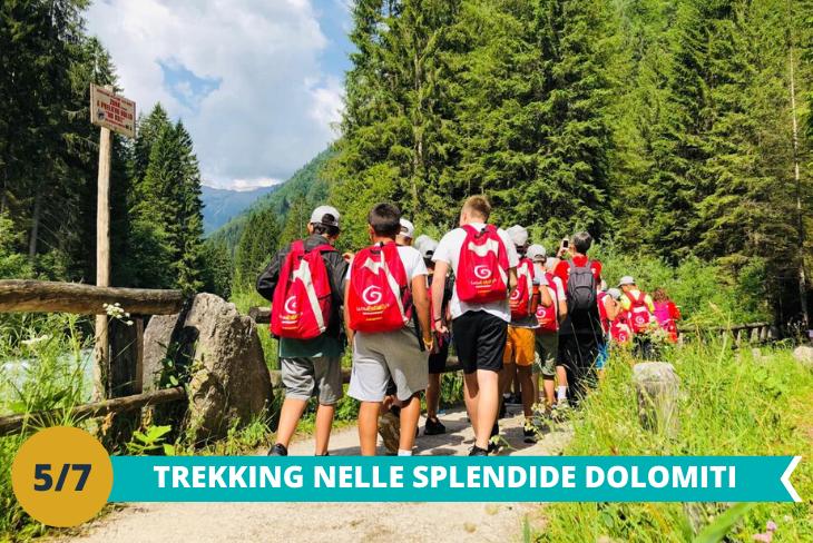 Escursione trekking tra le imponenti Dolomiti:dove i ragazzi potranno avventurarsi tra i boschi ed ammirare le meraviglie della natura