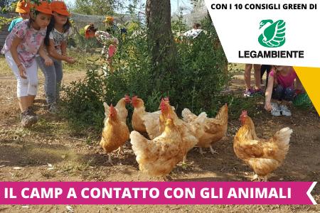 Soggiorni estivi 2021 - Estate INPSieme destinazione Italia-6-37