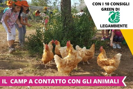 Estate INPSieme Soggiorni Estivi Italia per ragazzi 6-14 anni Conformi 100%-COPERTINE-CRISTAL-6
