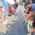 Soggiorno Estivo Estate INPSieme 2020 | HAPPY FARM - VITA IN FATTORIA-3-11-150x150