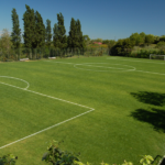 Soggiorno Estivo Estate INPSieme 2020 | MILAN CAMP PER PICCOLI CAMPIONI-5-6-150x150
