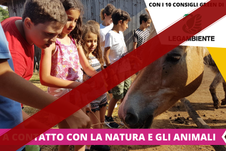 Soggiorni Estivi - Estate INPSieme 2020 2021 - destinazioni Italia - La Mia Estate-HAPPY-FARM
